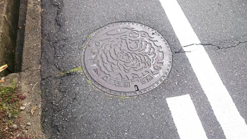 大阪「泉大津」のマンホール